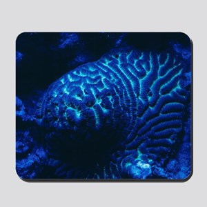 Fluorescing coral Mousepad