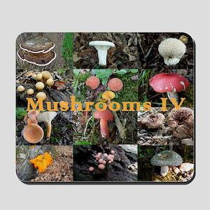 Eastern North America mushrooms Mousepad