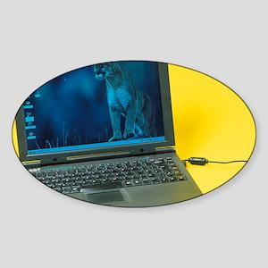 Laptop computer Sticker (Oval)