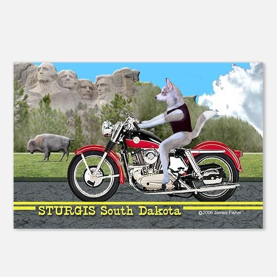 Siberian Husky Riding Har Postcards (Package of 8)