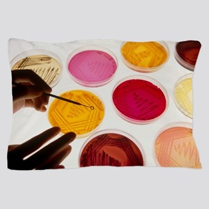 Petri dish bacterial cultures, picking Pillow Case