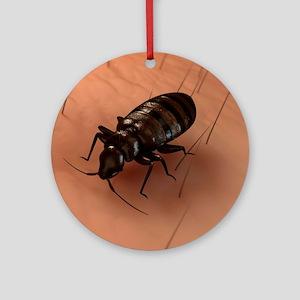 Bedbug, artwork Round Ornament