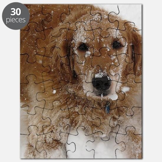 Golden Retriever in the snow Puzzle
