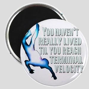 Terminal Velocity Magnet