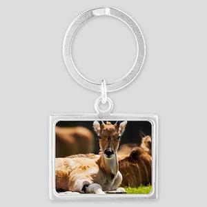 Eland antelope calf Landscape Keychain