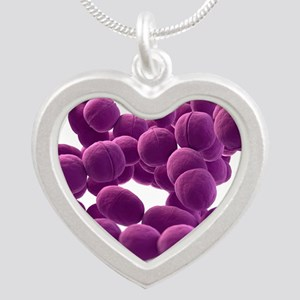 Streptococcus bacteria, artw Silver Heart Necklace