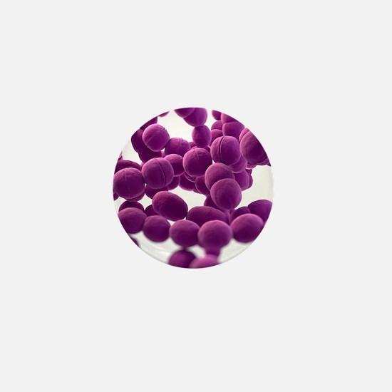 Streptococcus bacteria, artwork Mini Button