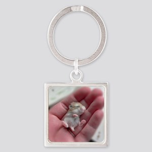 Adorable Sleeping Baby Hamster Square Keychain
