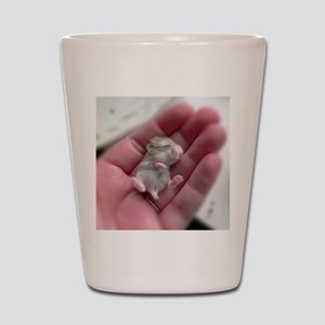 Adorable Sleeping Baby Hamster Shot Glass