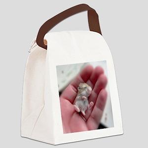 Adorable Sleeping Baby Hamster Canvas Lunch Bag