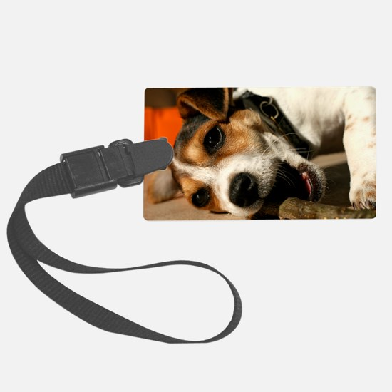 Jack Russell Terrier Puppy Chewi Luggage Tag