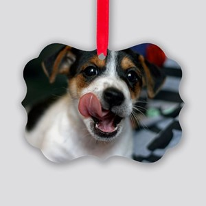 Puppy Licking Lips Picture Ornament