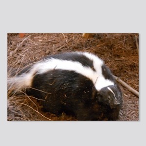Friendly Little Skunk Postcards (Package of 8)