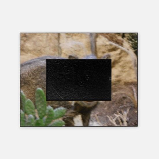 Wild Boar Picture Frame