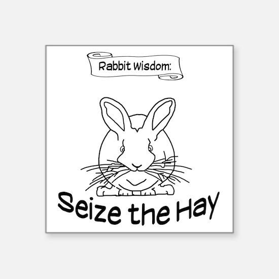 """Seize the Hay Square Sticker 3"""" x 3"""""""