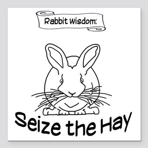 "Seize the Hay Square Car Magnet 3"" x 3"""