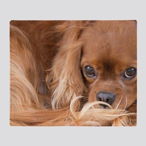 Sweet Friend Ruby Cavalier King Char Throw Blanket