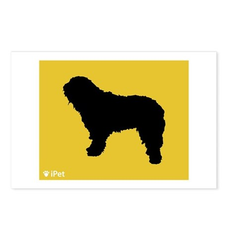Bergamasco iPet Postcards (Package of 8)