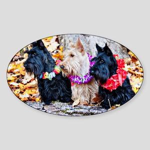 Scotties in Autumn v3 Sticker (Oval)