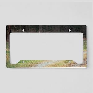 070506-17 License Plate Holder
