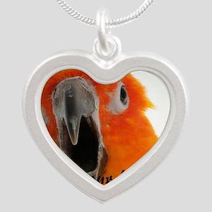 Sun Conure 2 Steve Duncan Silver Heart Necklace