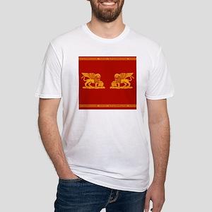 venetian flag Fitted T-Shirt