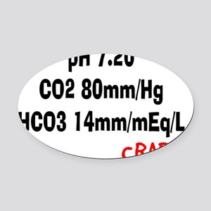 RT ABGS 2013 Oval Car Magnet
