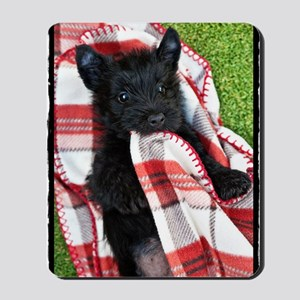 Scottish Terrier Puppy Play v2 Mousepad