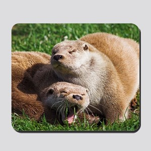 European otters Mousepad