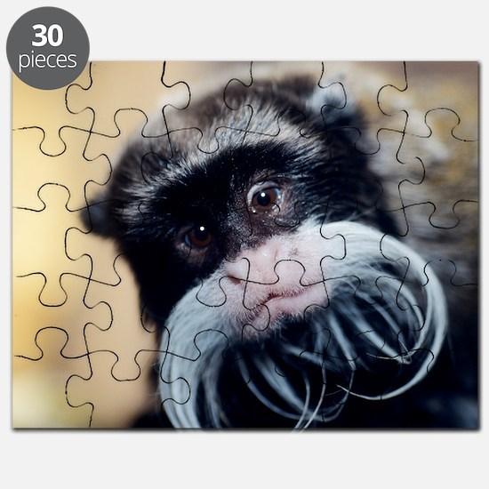 z9080017 Puzzle