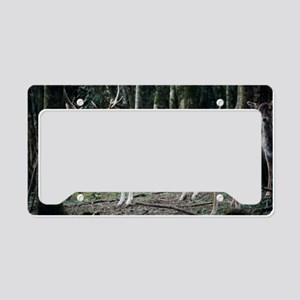 Fallow deer License Plate Holder