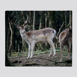 Fallow deer Throw Blanket