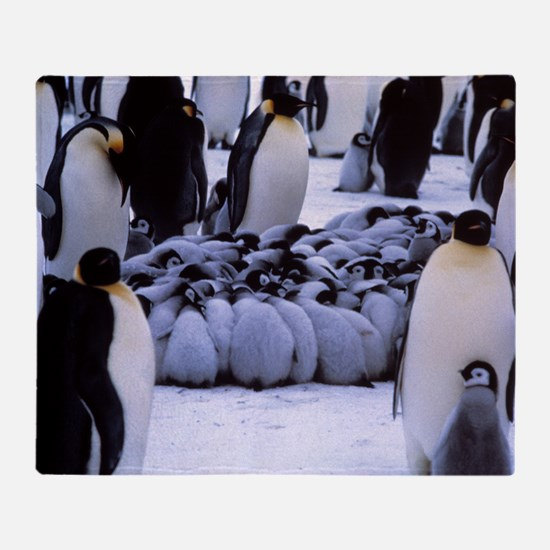 Emperor penguin chicks huddling Throw Blanket