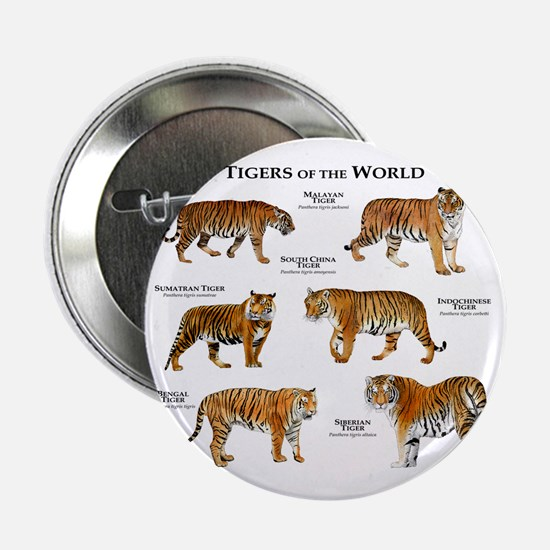 "Tigers of the World 2.25"" Button"