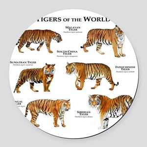 Tigers of the World Round Car Magnet