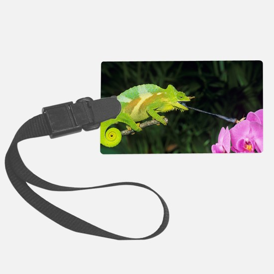 Four-horned chameleon Luggage Tag