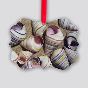 Freshwater snail shells Picture Ornament