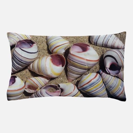 Freshwater snail shells Pillow Case