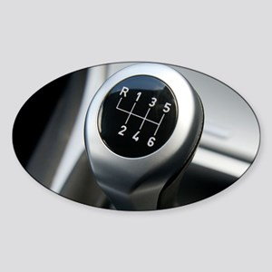t6150455 Sticker (Oval)