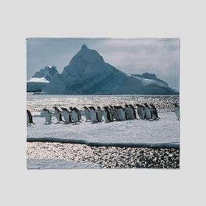 Gentoo penguins Throw Blanket