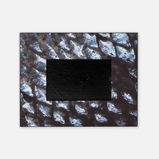 Fish scales Picture Frame