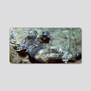 Flounder Aluminum License Plate