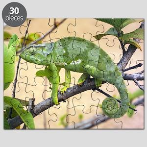 z7700066 Puzzle