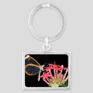 Glasswing butterfly Landscape Keychain
