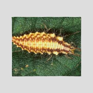 Green lacewing larva Throw Blanket