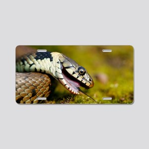 Grass snake feigning death Aluminum License Plate