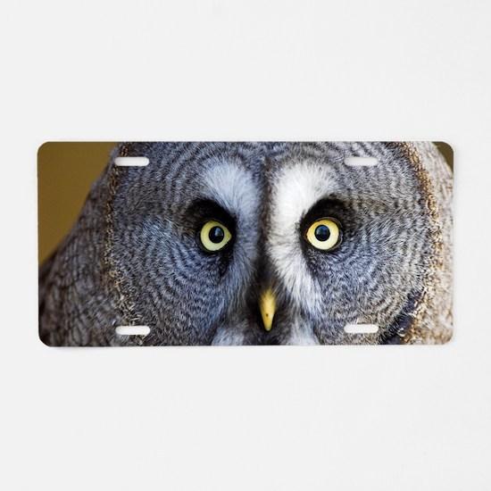 Great grey owl Aluminum License Plate