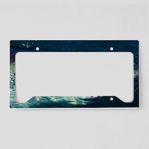 Great white shark License Plate Holder