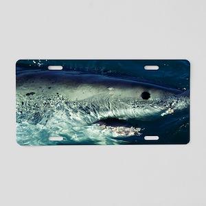 Great white shark Aluminum License Plate