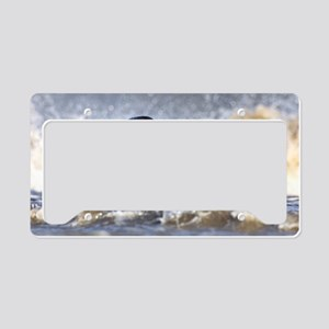 Grey seal juvenile License Plate Holder